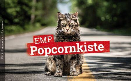 Film-Review: FRIEDHOF DER KUSCHELTIERE startet im Kino!