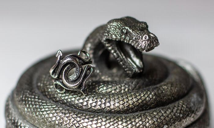 Verschlungenes Schmuckstück – der Schlangen Ring von etNox