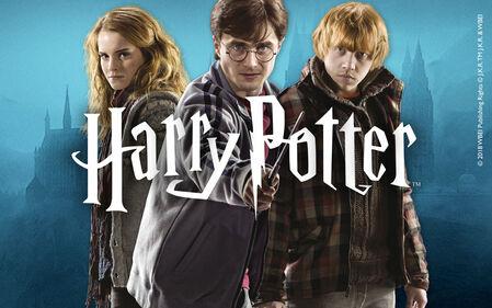 Entdecke die magische Welt von Harry Potter!