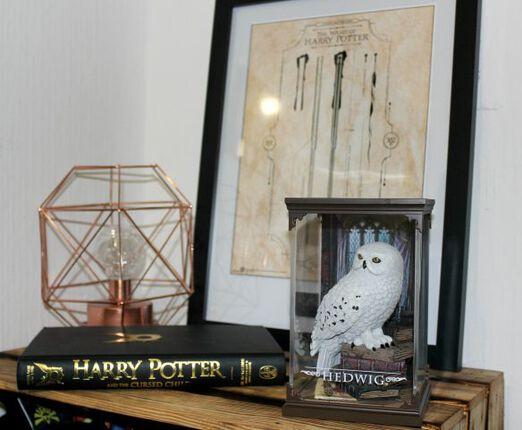 Nichts für Muggel: Hedwig und Harry Potters Zauberstab