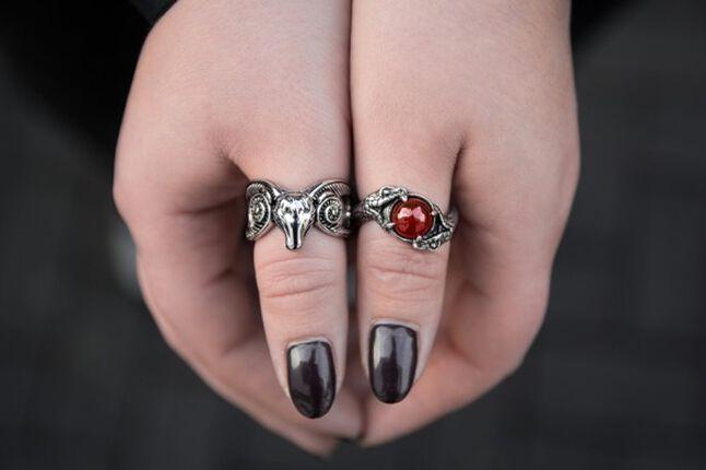 Tierisch gut drauf: Meine neuen Ringe
