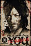 Daryl Dixon - Survive