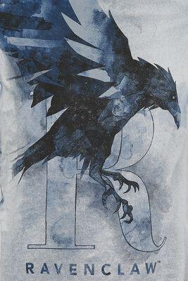 Ravenclaw - The Raven