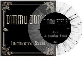 Interdimensional summit