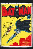 Adventures Of The Batman And Robin