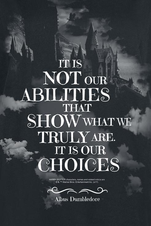 Details zu Harry Potter Choices T Shirt schwarz