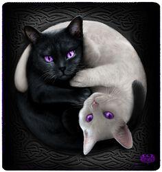 Yin Yang Cats Fleecedecke