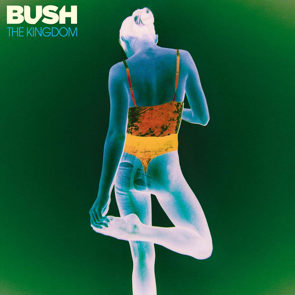 Bush  The kingdom  CD  Standard