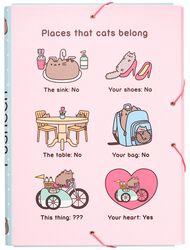 Places that cats belong