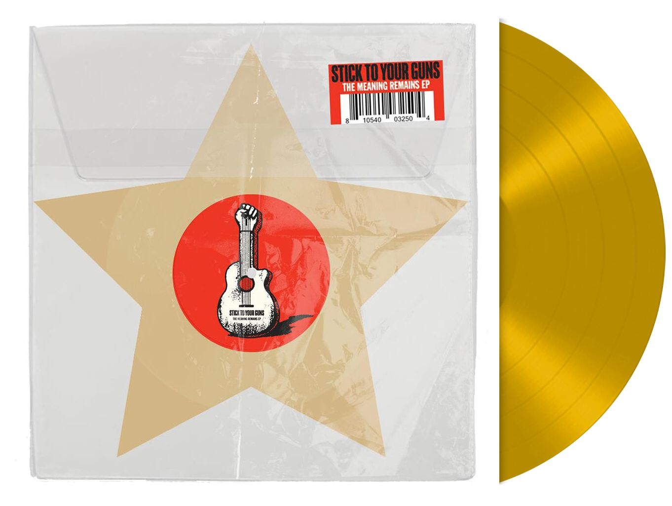 Image of Stick To Your Guns The meaning remains 12 inch-Single goldfarben