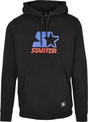 Two Color Logo Hoody