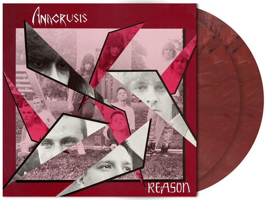 Image of Anacrusis Reason 2-LP marmoriert