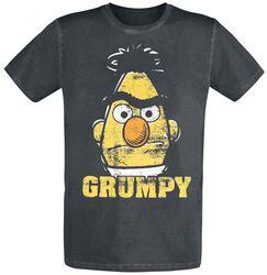 Bert - Grumpy