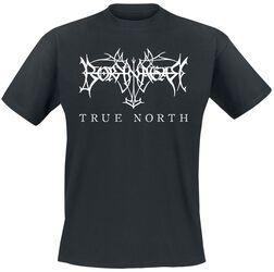 True North - Logo