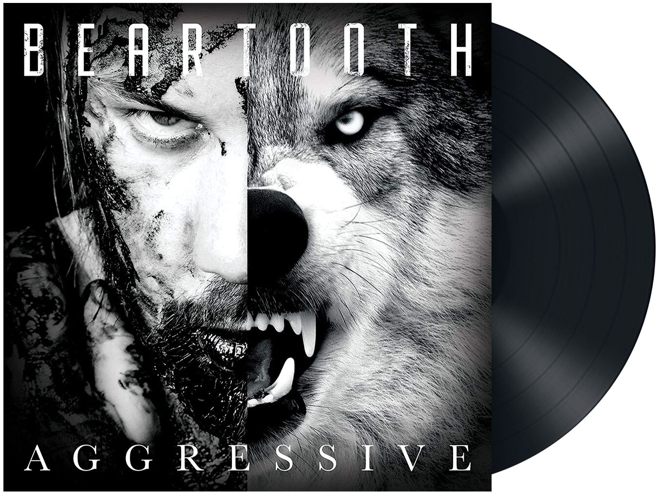Image of Beartooth Aggressive LP Standard