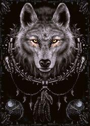 Wolf Dreams