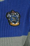 Ravenclaw - Quidditch