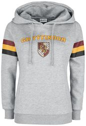 Gryffindor - College Stripes