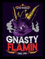 Gnasty Flamin