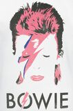 Aladdin Sane Distressed