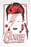 Amplified Collection - Aladdin Sane Diamante