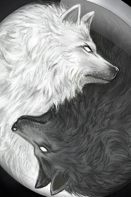 Image of Wildcat Wolves Pack Ear Plug Standard