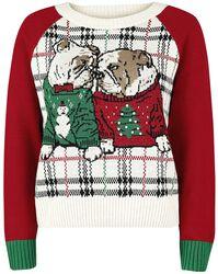 Weihnachtliche Hunde - Bulldogge