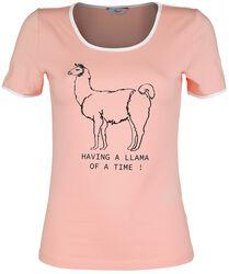 Having A Llama Of A Time