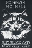 No Heaven No Hell Just Black Cats