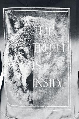 Truth Inside