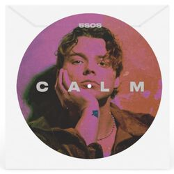 Calm (Ashton Remix)