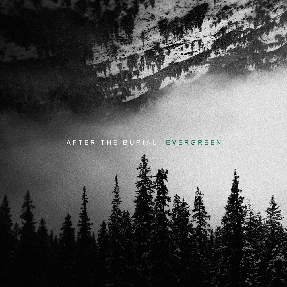 Image of After The Burial Evergreen LP Standard