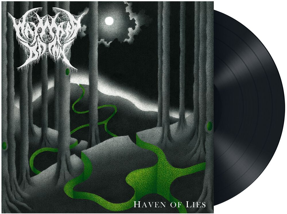 Haven of lies