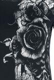 Dames´ Roses