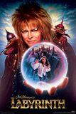 Die Reise ins Labyrinth David Bowie
