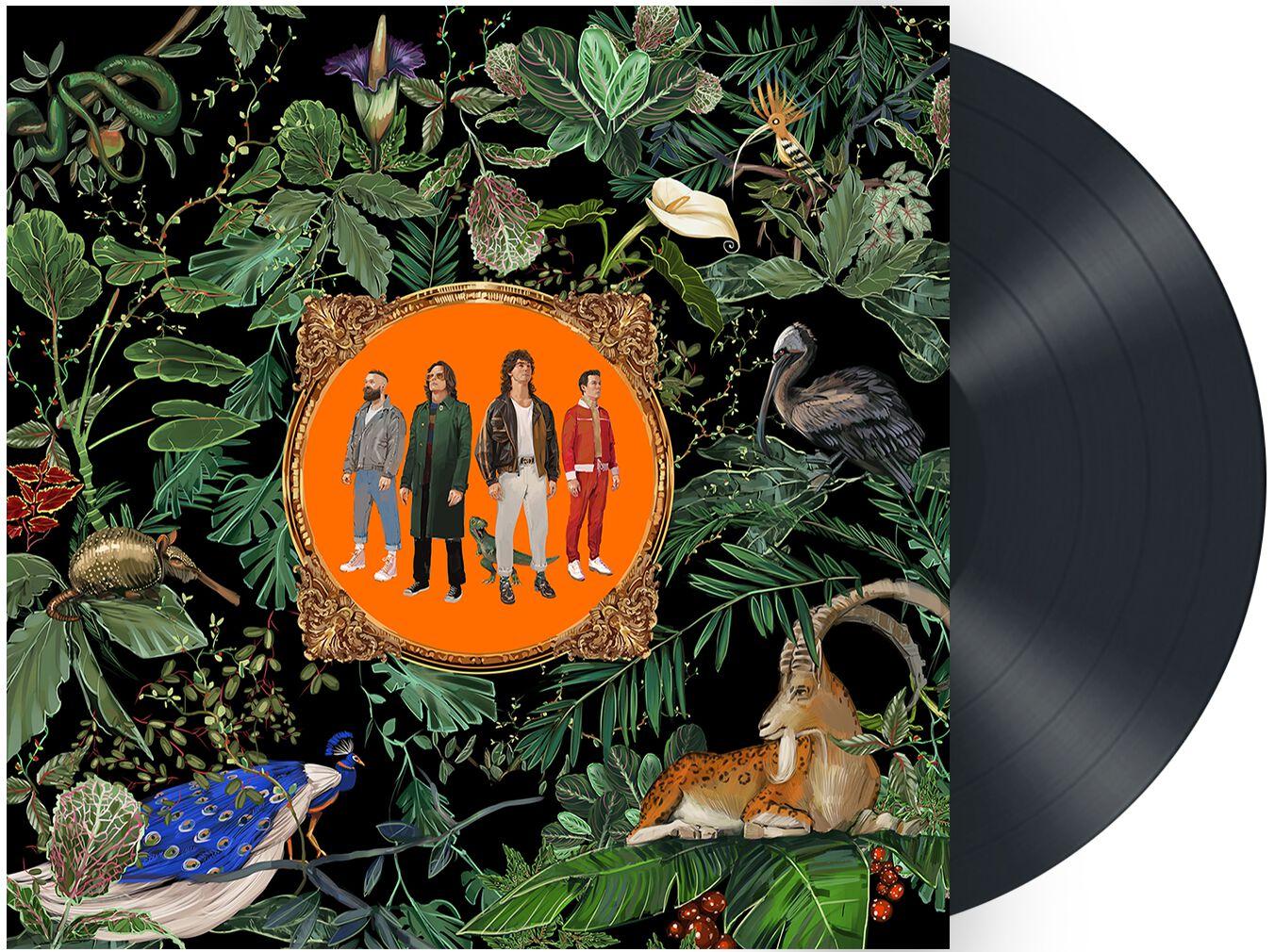 Don Broco Amazing things LP schwarz ST6065-1