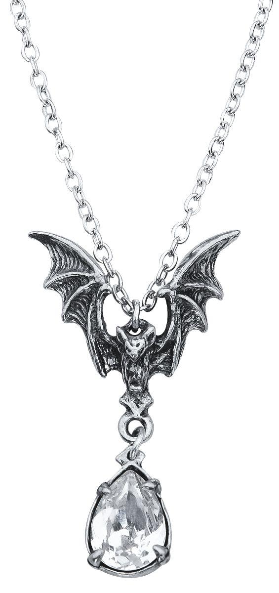 Alchemy Gothic La Nuit Halskette silberfarben P600