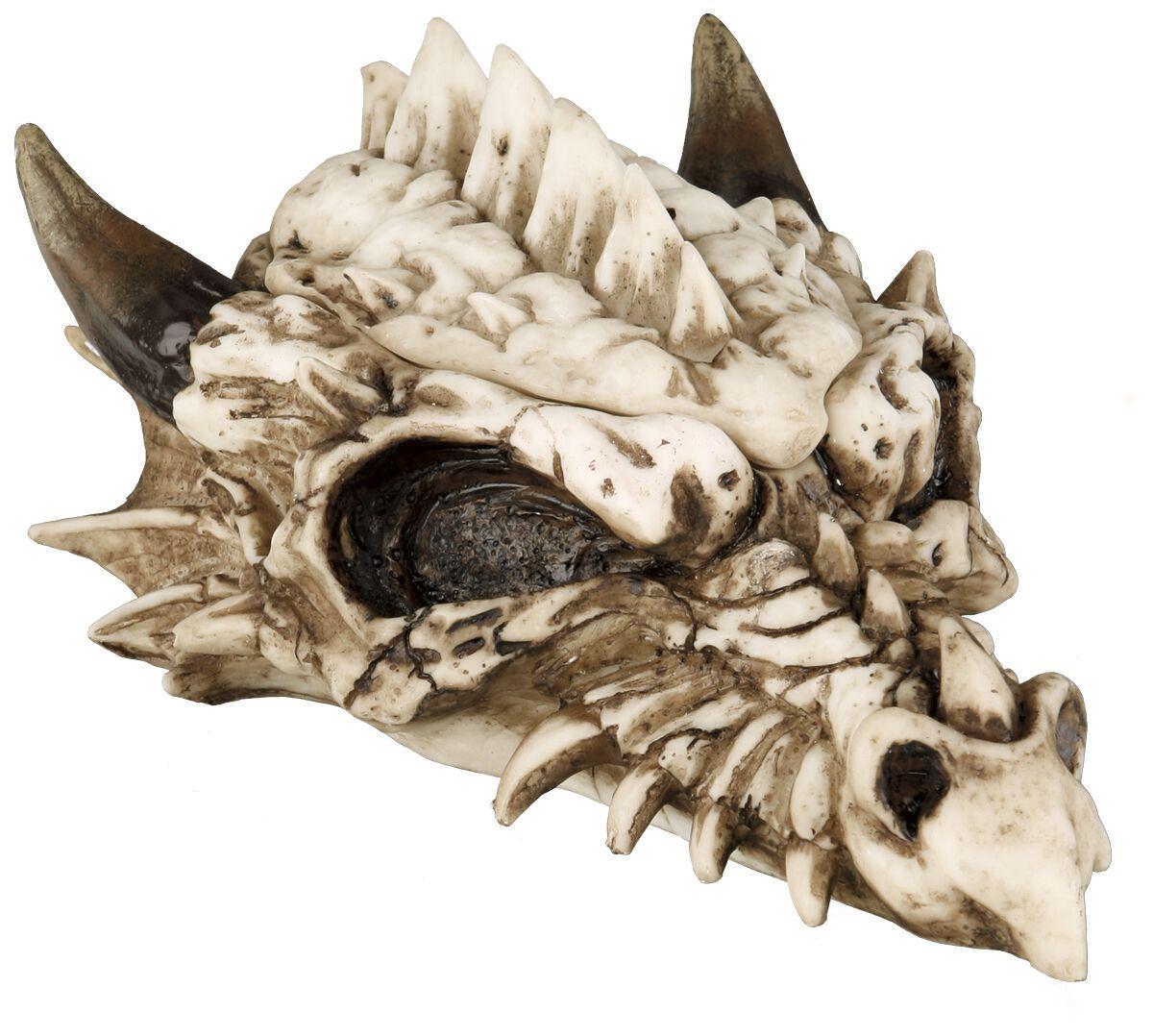 Image of   Nemesis Now Smaug Box Dekorativt kranie råhvid
