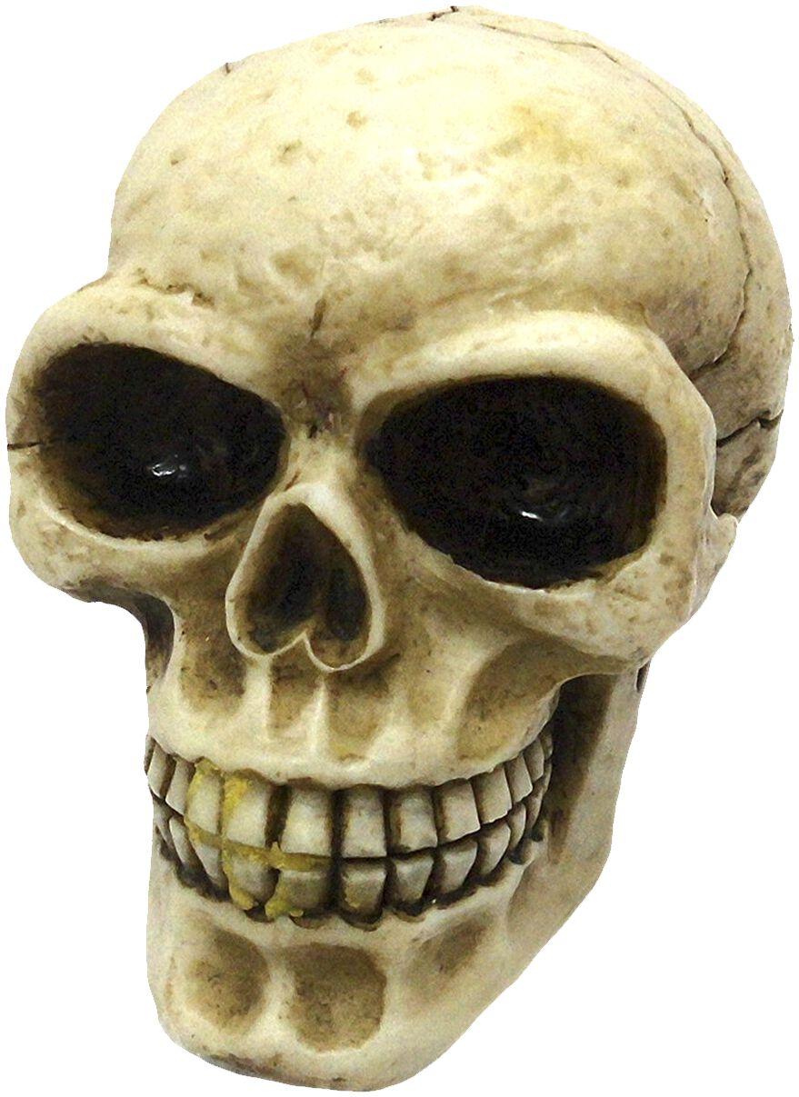 Image of   Nemesis Now Skull geraknob Bildekoration natur