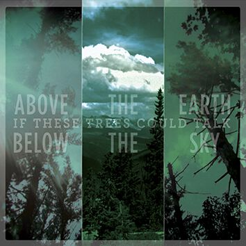 If These Trees Could Talk Above the earth, belo...