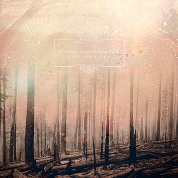 If These Trees Could Talk Red forest CD Standard