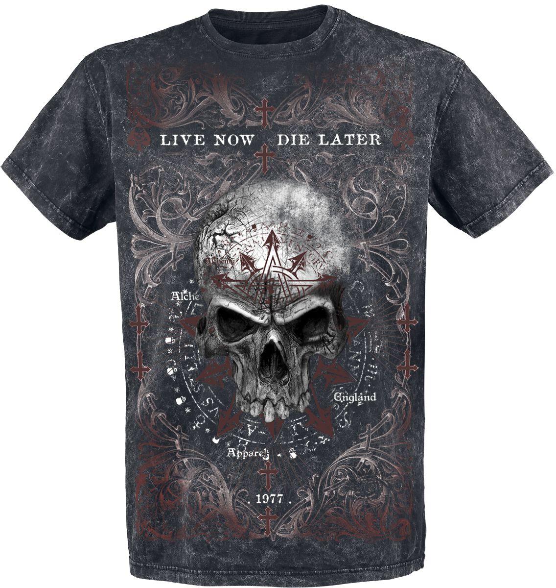 Image of   Alchemy England Demons Birth Vintage T-Shirt mørk grå