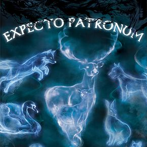 Harry Potter Patronus Poster multicolore