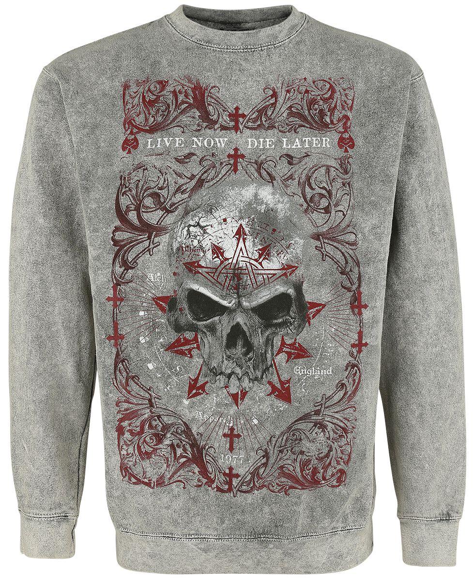 Image of   Alchemy England Demon Birth Sweatshirt grå
