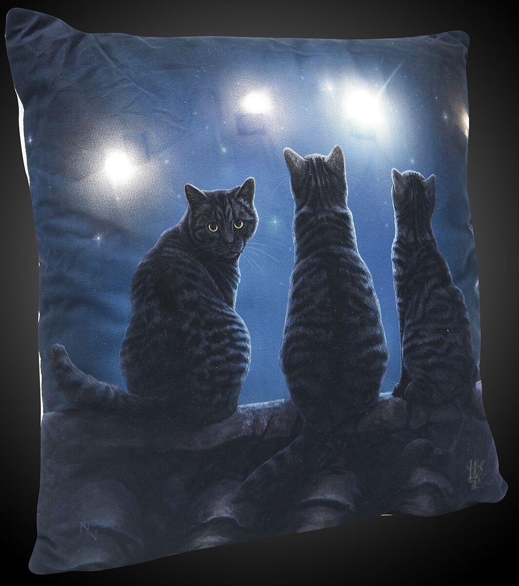 Image of   Nemesis Now Light Up Cushion Wish Upon a Star Dekorationspude blå-brun