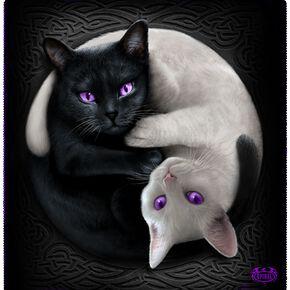 Spiral Yin Yang Cats Fleecedecke Couverture polaire noir