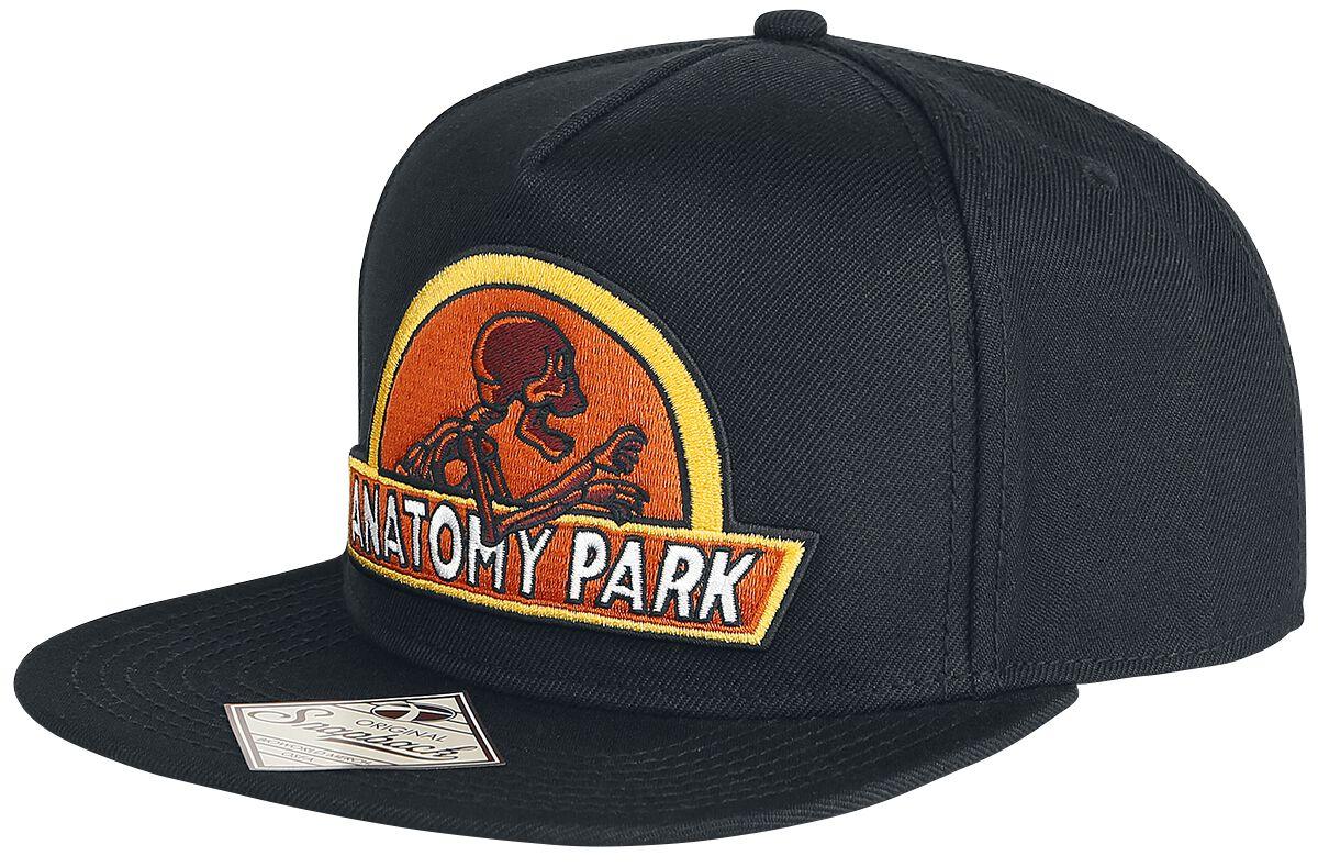 Image of   Rick And Morty Anatomy Park Snapback Cap sort