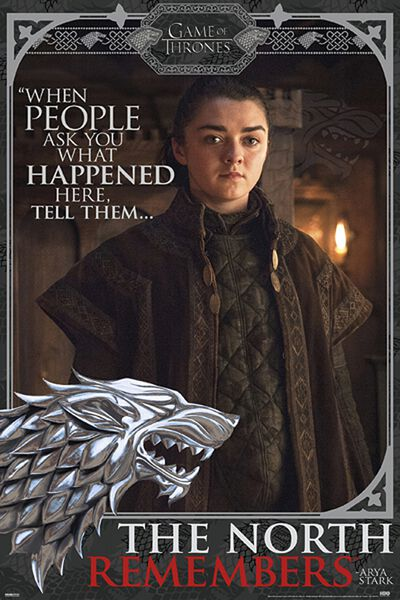 Image of   Game Of Thrones Arya Stark Plakat multifarvet