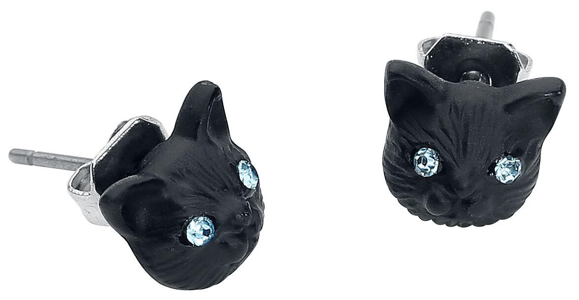 Image of   Wildcat Behind Blue Eyes Ørestik sæt sort