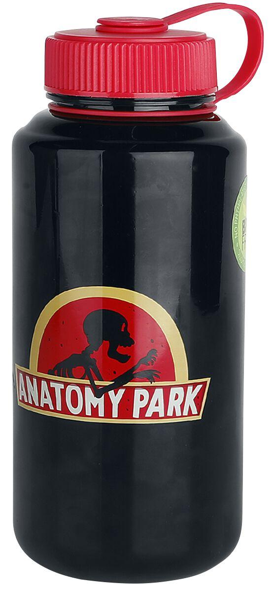 Image of   Rick And Morty Anatomy Park - Wasserflasche Drikkeflaske multifarvet
